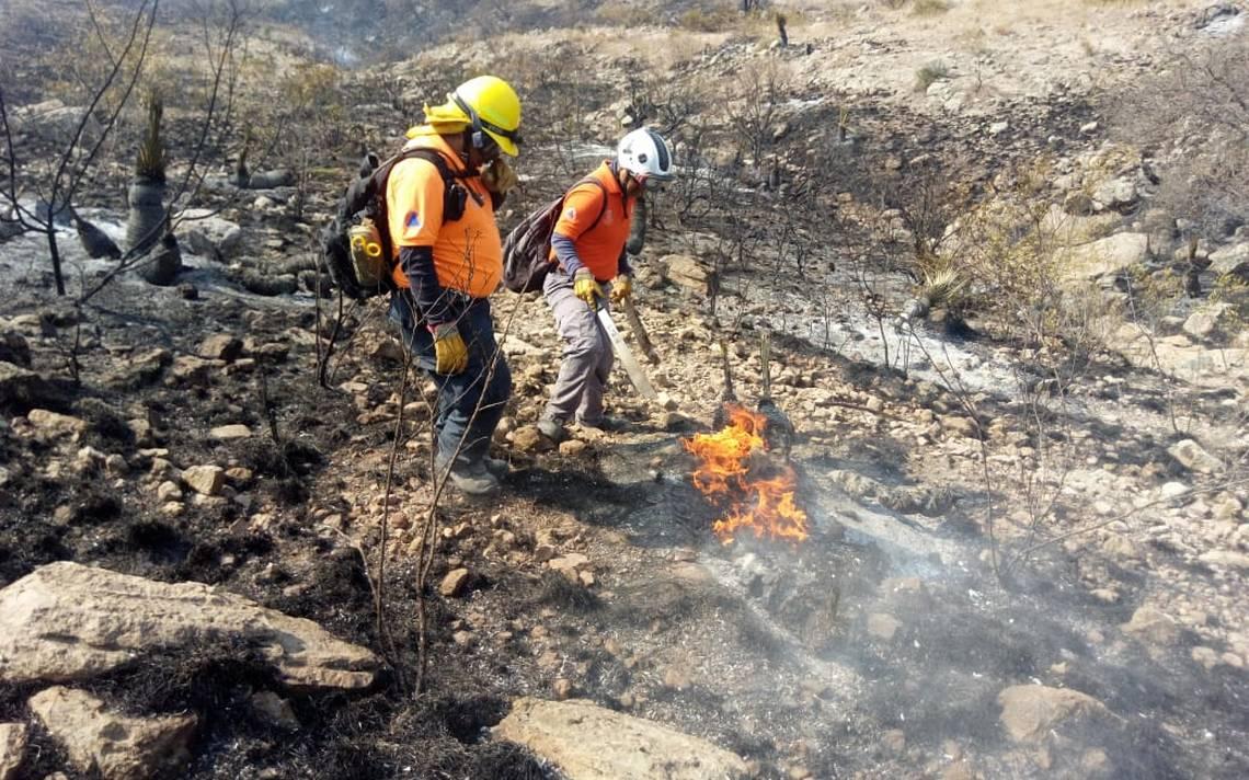 Advierten que en 2020 habrá más incendios - El Sol de San Luis