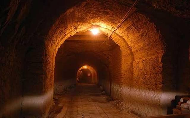 Indignación Por La Muerte De Un Equino En El Interior Del Túnel De